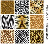 Animal Skin Seamless Pattern...