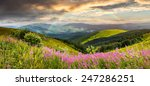 composite landscape with high wild grass and purple flowers on the top of high mountain with rainbow - stock photo