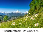 panoramic view of beautiful... | Shutterstock . vector #247320571