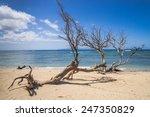 Quiet Sand Beach On Maui Islan...