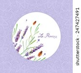 vector watercolor lavender. it... | Shutterstock .eps vector #247427491