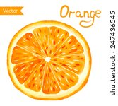 juicy orange on the white... | Shutterstock .eps vector #247436545