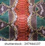 snake skin background | Shutterstock . vector #247466137