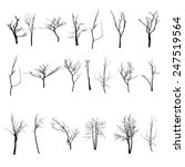 vector black silhouette of a... | Shutterstock .eps vector #247519564