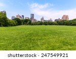 Central Park Sheep Meadow...
