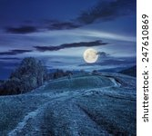 composite autumn landscape. path through the meadow on mountain top at  night in full moon light - stock photo