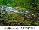 Smoky Mountain Stream. A River...
