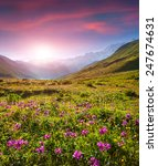 Colorful Summer Sunrise In The...