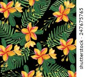 floral pattern with tropical... | Shutterstock . vector #247675765