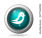 bird icon. internet button on... | Shutterstock . vector #247764004