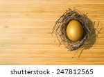 golden egg opportunity with... | Shutterstock . vector #247812565
