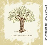 vector tree   stylized abstract ... | Shutterstock .eps vector #247939135