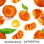 watercolour tangerines seamless ... | Shutterstock . vector #247999741