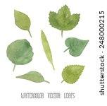 vector set of green watercolor...   Shutterstock .eps vector #248000215