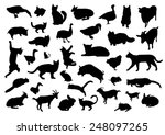 animals silhouettes set | Shutterstock .eps vector #248097265