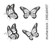 Stock vector set of silhouette butterflies isolated for spring editable vector illustration 248160457