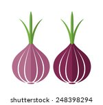 onion. isolated vegetables on... | Shutterstock .eps vector #248398294