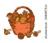 hand drawn basket of mushrooms... | Shutterstock .eps vector #248487511