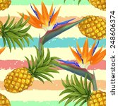 tropical exotic flowers and...   Shutterstock .eps vector #248606374