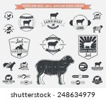 vector lamb logos  labels ... | Shutterstock .eps vector #248634979