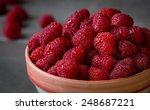 fresh raspberries in a bowl | Shutterstock . vector #248687221