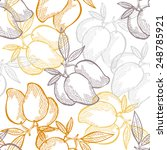 elegant seamless pattern with... | Shutterstock .eps vector #248785921