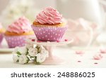delicious cupcakes on table ... | Shutterstock . vector #248886025