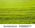 agricultural field | Shutterstock . vector #248888371