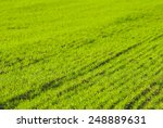 agricultural field | Shutterstock . vector #248889631