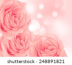flower rose | Shutterstock . vector #248891821