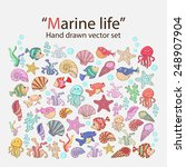 vector marine life hand drawn... | Shutterstock .eps vector #248907904