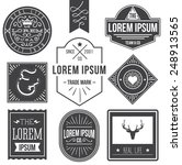 vintage hipster labels with... | Shutterstock .eps vector #248913565