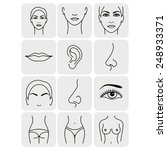 body parts icons plastic face...   Shutterstock .eps vector #248933371