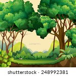 illustration of a forest view... | Shutterstock .eps vector #248992381