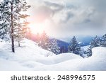 snow covered trees in the... | Shutterstock . vector #248996575