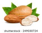 almonds with kernels and leaves.... | Shutterstock .eps vector #249030724