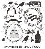 set of winter collection... | Shutterstock .eps vector #249043309