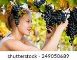 beautiful young blonde woman... | Shutterstock . vector #249050689