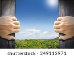 new life concept. 2 hands... | Shutterstock . vector #249113971