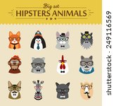 cute fashion hipster  animals ... | Shutterstock .eps vector #249116569