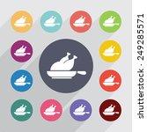 chicken grill circle  flat... | Shutterstock .eps vector #249285571