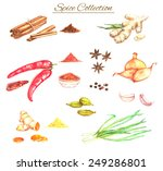 watercolor hand drawn... | Shutterstock .eps vector #249286801