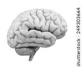 3d brain | Shutterstock . vector #249303664