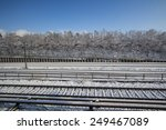 Snowy Railroad With Trees Alon...