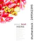 shoe shaped gold ingot  yuan... | Shutterstock . vector #249542395