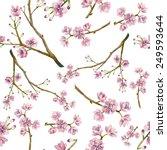 watercolor sakura pattern.... | Shutterstock .eps vector #249593644
