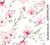Spring Magnolia Flowers...