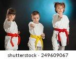 group kids karate martial arts | Shutterstock . vector #249609067