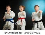 karate martial arts | Shutterstock . vector #249737431