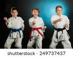 karate martial arts | Shutterstock . vector #249737437